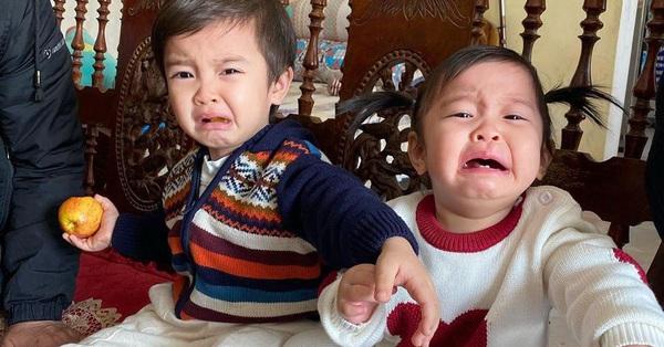 Mới đầu năm mà 2 út Sữa, Sam nhà Hằng Túi đã khóc mếu, lý do