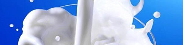 Những điều cần lưu ý khi cho bé uống sữa tươi 2