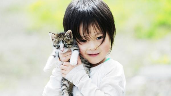 Xem video này bạn sẽ hiểu vì sao nên cho trẻ làm bạn với một chú mèo cưng