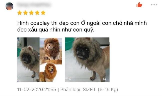 """Bỏ 69k đặt mua """"bờm sư tử dũng mãnh"""" cho pet, khách hoảng hồn khi nhận sản phẩm về tay như đạo cụ phim kinh dị - Ảnh 2."""