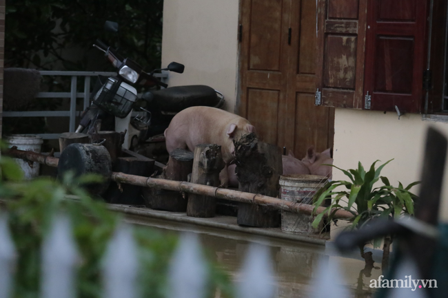 Theo chân các đoàn cứu trợ vào tâm lũ Quảng Bình: Chúng tôi tất cả phải vì dân - Ảnh 18.