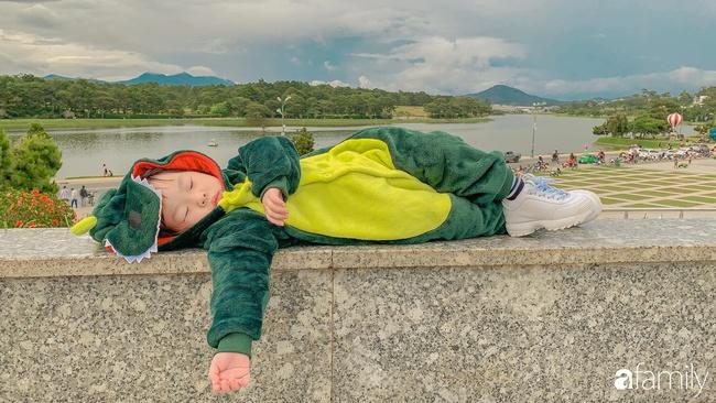 """Đang tuổi ăn tuổi ngủ mà mẹ cứ rủ đi Đà Lạt chụp ảnh, cô bé 2 tuổi nằm vắt chân """"đánh"""" một giấc ngon lành nhận luôn """"bão like"""" a - Ảnh 1."""