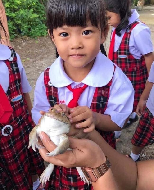 Để học sinh hiểu về ếch, cô giáo cho các em sờ tận tay nhưng bức ảnh cuối tiết lộ kết đắng của loài lưỡng cư khiến ai cũng bật cười - Ảnh 5.