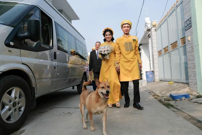"""Biểu cảm hớn hở của chú chó vào ngày chủ kết hôn gây bão mạng xã hội, dân mạng: Chắc vui vì cuối cùng cũng thành """"con ruột"""" rồi!  - Ảnh 3."""