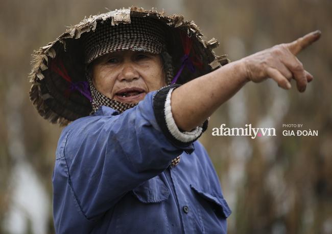 Độc quyền: Khung cảnh tại quê hương Đỗ Thị Hà trong những ngày chờ đón Tân Hoa hậu về làng - Ảnh 8.