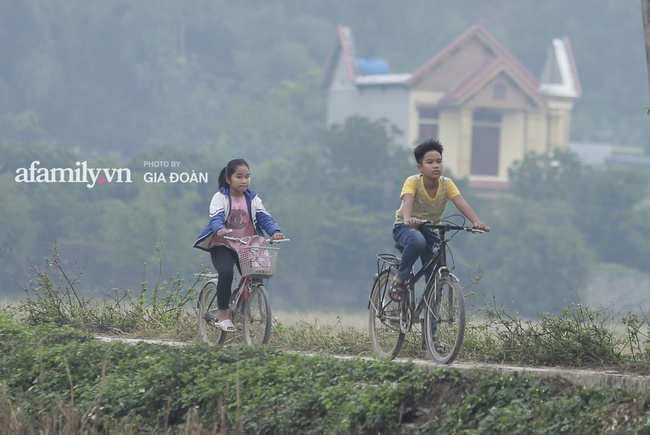Độc quyền: Khung cảnh tại quê hương Đỗ Thị Hà trong những ngày chờ đón Tân Hoa hậu về làng - Ảnh 2.