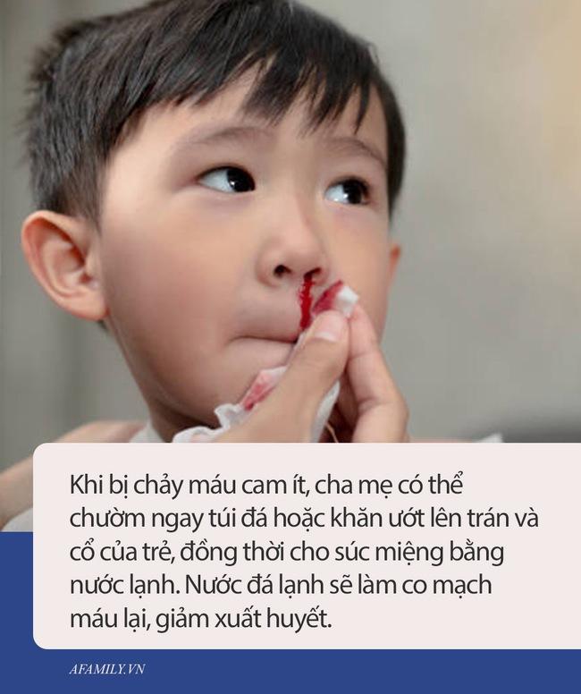 Cậu bé 2 tuổi chảy máu cam, người mẹ sai lầm trong cách sơ cứu khiến con trai tử vong ngay lập tức - Ảnh 1.