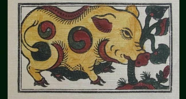 10 lý do cho thấy lợn là loài động vật siêu hay tuyệt vời - Ảnh 2.