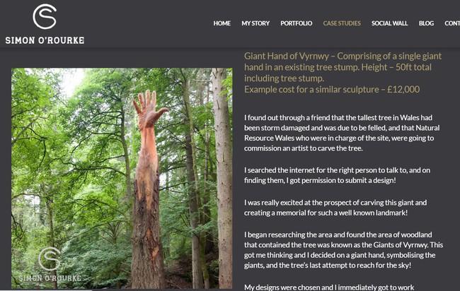 Giữa rừng cây xanh bỗng trồi lên một bài tay khổng lồ gân guốc gây kinh hãi nhưng sự thật lại khiến mọi người phải trầm trồ - Ảnh 3.