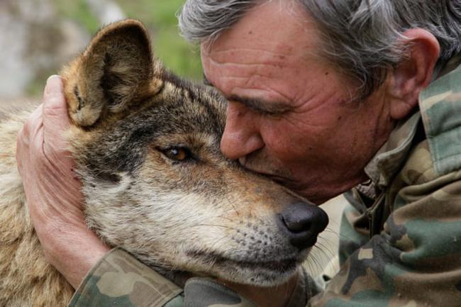 """Câu chuyện có thật về """"cậu bé rừng xanh"""" được bầy sói nuôi dưỡng trong 12 năm và cuộc sống sau khi tái hòa nhập cộng đồng con người - Ảnh 3."""