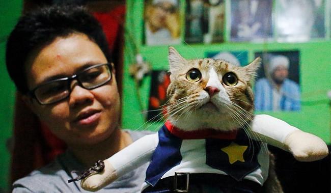 Thầy giáo bỏ nghề mở tiệm may quần áo mèo, ngày ế ẩm nhất vẫn thu tiền triệu - Ảnh 4.