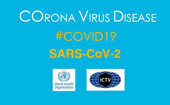 WHO nói về việc đổi tên dịch bệnh COVID-19, khiến nhiều người quan tâm - Ảnh 3.