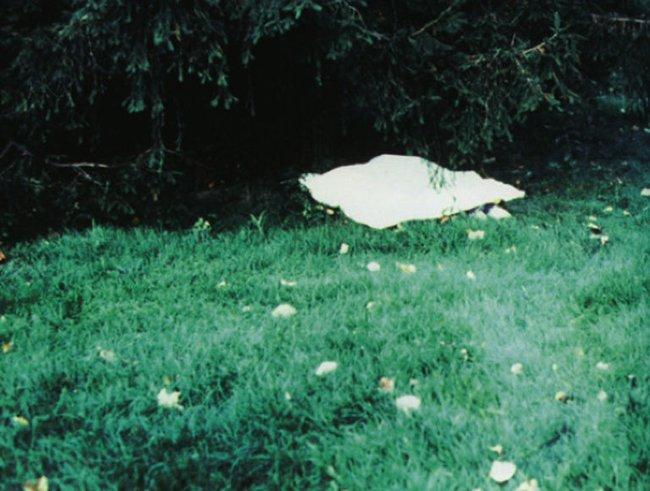 Vụ án giết chết thiếu nữ 14 tuổi xinh đẹp, giỏi giang khiến cảnh sát mất hơn 2 thập kỷ mới phá giải dù hung thủ ở ngay trước mắt - Ảnh 4.