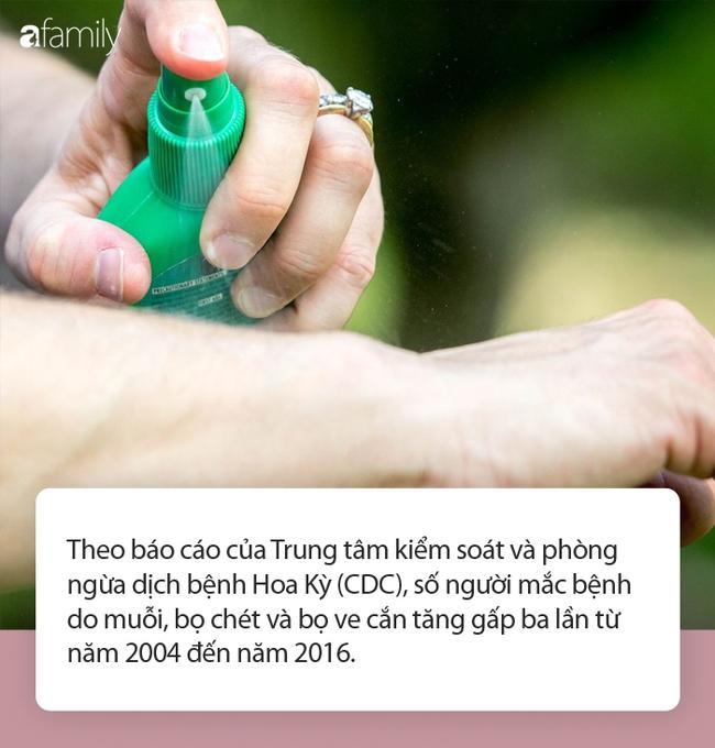 Các sản phẩm diệt muỗi chứa chất này liệu có an toàn? - Ảnh 1.