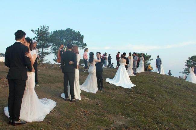 """Nhìn tấm hình cả một ngọn đồi toàn cô dâu chú rể chụp ảnh cưới mà cứ có cảm giác """"rờn rợn"""", khi lại gần thì thấy hoàn toàn khác - Ảnh 3."""