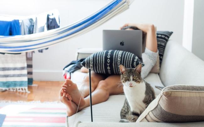 Phải làm việc tại gia vì Covid-19, chị em công sở không nên bỏ qua 5 hoạt động thú vị chứng minh: Ở nhà cũng vui mà! - Ảnh 2.