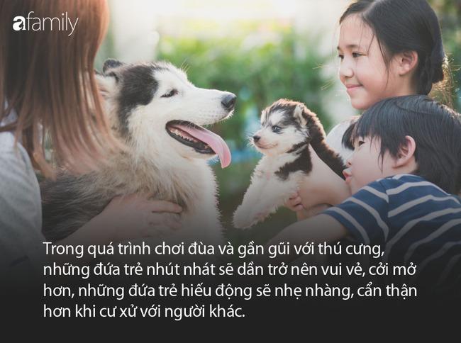Thấy bé trai bị mẹ đưa tay ra đánh, chú chó cưng đã làm 1 việc khiến ai thấy cũng ấm lòng - Ảnh 6.