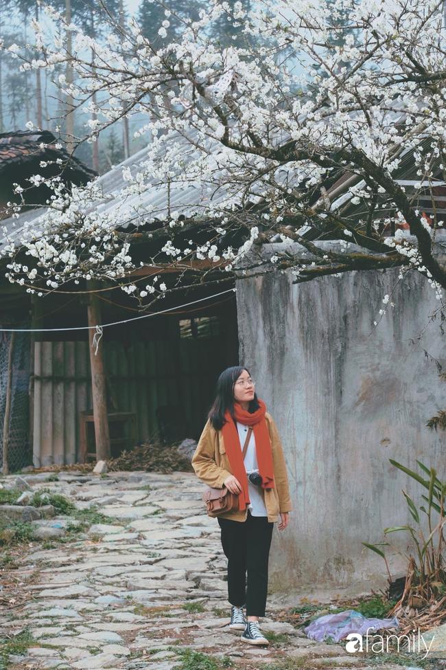 Hà Giang tháng 3 đẹp mê hồn trong mắt cô gái trẻ xứ Thanh, thật khó tin khi 4 loài hoa núi rừng đủ sắc màu cùng nở một lúc - Ảnh 19.