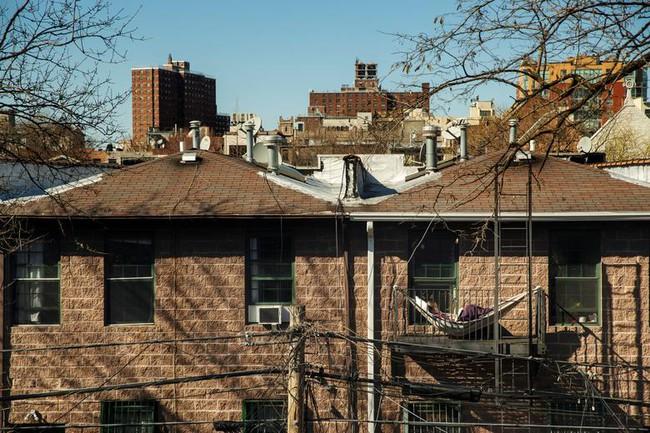 Cuộc sống bên ô cửa sổ, trên ban công, mái nhà thời cách ly tránh Covid-19, tưởng bí bách tù túng nhưng đẹp lạ thường - Ảnh 6.