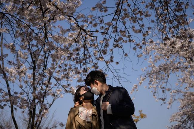 Khi loài người vẫn đang hối hả chống lại bệnh tật, hơi thở của mùa xuân đã từ từ len lỏi đến từng ngõ ngách khắp thế giới - Ảnh 9.