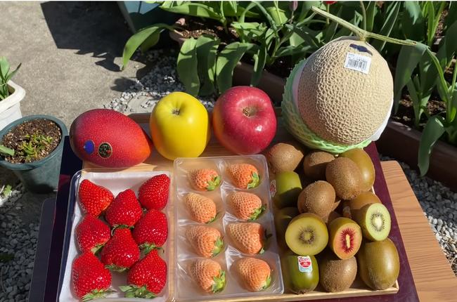 Quỳnh Trần JP thưởng thức mâm trái cây đắt đỏ giữa vườn nhà đầy hoa, mua hẳn giống xoài giá bạc triệu 1 trái, chịu nắng nóng để ngồi quay vlog - Ảnh 3.