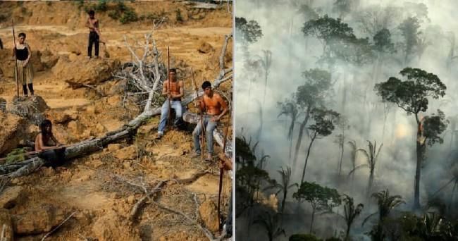 Trong khi cả thế giới gồng mình chống dịch bệnh, rừng Amazon cũng đang phải chịu sự tàn phá nặng nề do chính con người gây ra - Ảnh 1.