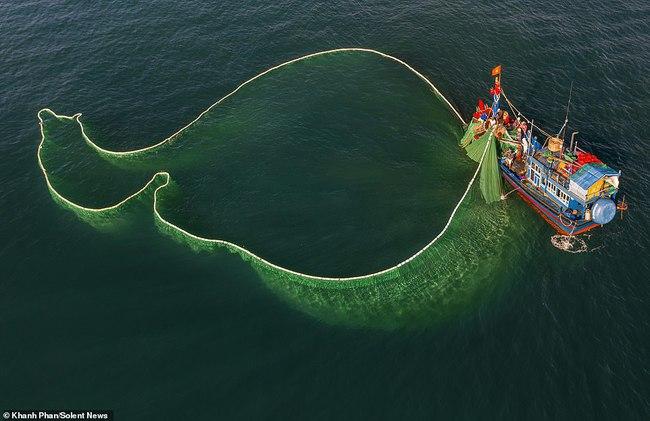 Cảnh người dân tung lưới đánh cá ở Phú Yên đầy mê hoặc được báo nước ngoài chia sẻ và ca ngợi hết lời - Ảnh 3.