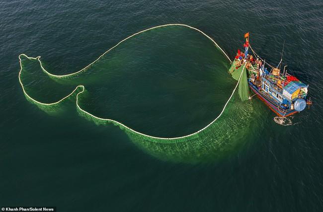 Cảnh người dân tung lưới đánh cá ở Phú Yên đầy mê hoặc được báo nước ngoài chia sẻ và ca ngợi hết lời - Ảnh 6.