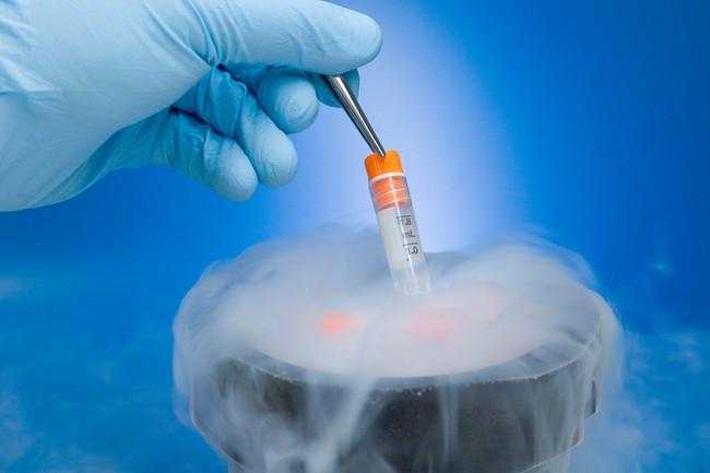 Em bé đầu tiên trên thế giới được sinh ra từ một quả trứng được nuôi trong phòng thí nghiệm khi người mẹ bị ung thư - Ảnh 2.