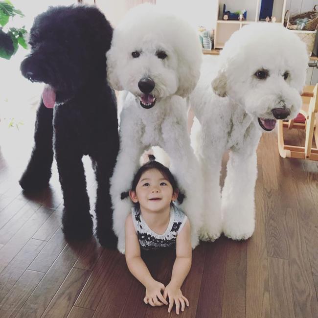 Bà ngoại bỗng nổi như cồn khi khoe bộ ảnh các cháu chơi cùng 3 chú cún cưng cực kỳ dễ thương - Ảnh 2.