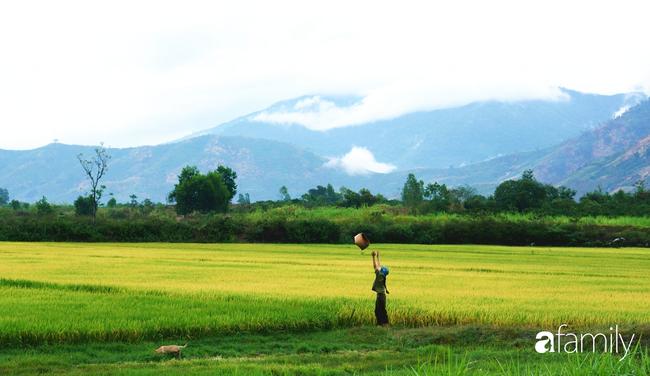 """""""Cô gái đồng quê"""" Việt Nam bất ngờ kể về tuổi ấu thơ nghèo khó và ảnh hưởng của cha mẹ khi quyết định bỏ phố về làm nông dân 4.0 hạnh phúc - Ảnh 1."""