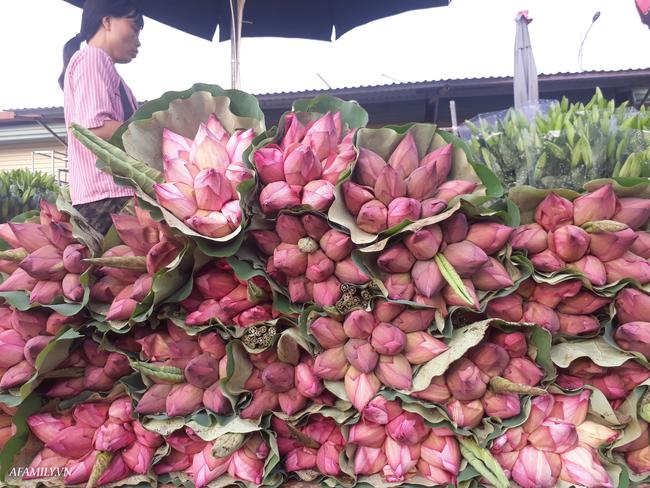 Tháng 5, sen hồng, sen trắng đầu mùa bán đầy các chợ, giá chỉ 30-120 ngàn đồng/bó, bà nội trợ thi nhau mua về cắm vì vẻ đẹp tao nhã - Ảnh 1.