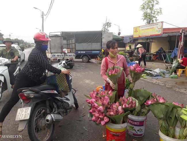 Tháng 5, sen hồng, sen trắng đầu mùa bán đầy các chợ, giá chỉ 30-120 ngàn đồng/bó, bà nội trợ thi nhau mua về cắm vì vẻ đẹp tao nhã - Ảnh 4.