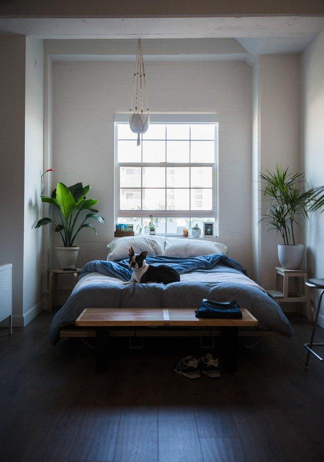 Nếu đầu giường để hai thứ này, tình cảm vợ chồng bất hòa, sức khỏe giảm sút - Ảnh 2.