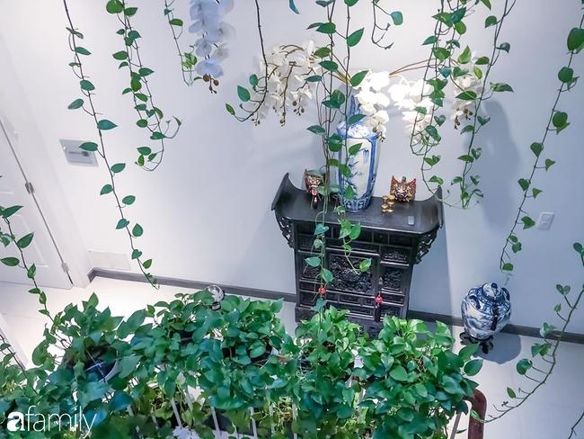 Giữa Sài Gòn náo nhiệt, vẫn có căn nhà ống 20m2 với 4 tầng lầu cực chill và không gian xanh mát chỉ với 20 triệu mua cây xanh - Ảnh 4.