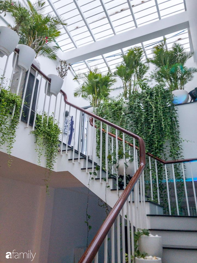 Giữa Sài Gòn náo nhiệt, vẫn có căn nhà ống 20m2 với 4 tầng lầu cực chill và không gian xanh mát chỉ với 20 triệu mua cây xanh - Ảnh 5.
