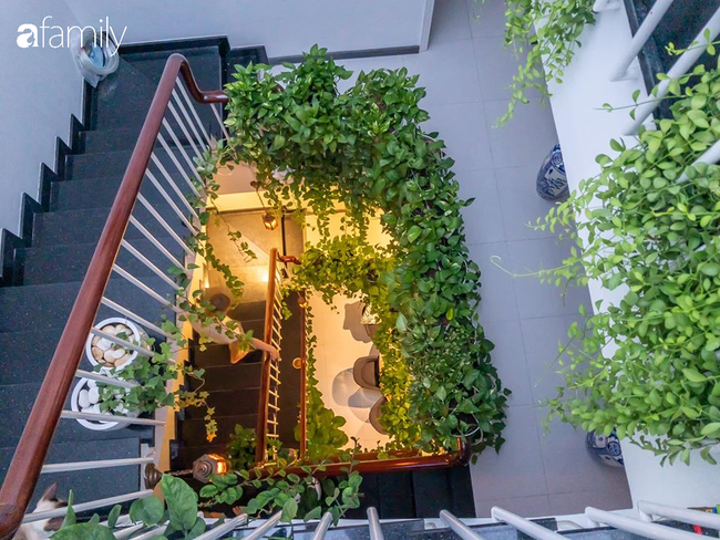 Giữa Sài Gòn náo nhiệt, vẫn có căn nhà ống 20m2 với 4 tầng lầu cực chill và không gian xanh mát chỉ với 20 triệu mua cây xanh - Ảnh 7.