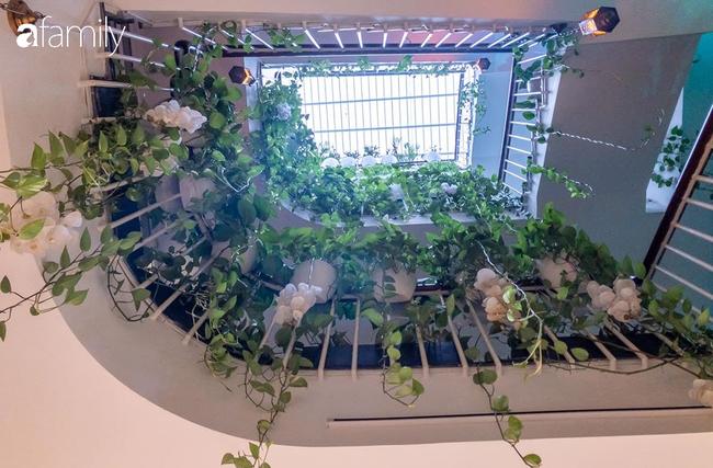 Giữa Sài Gòn náo nhiệt, vẫn có căn nhà ống 20m2 với 4 tầng lầu cực chill và không gian xanh mát chỉ với 20 triệu mua cây xanh - Ảnh 8.