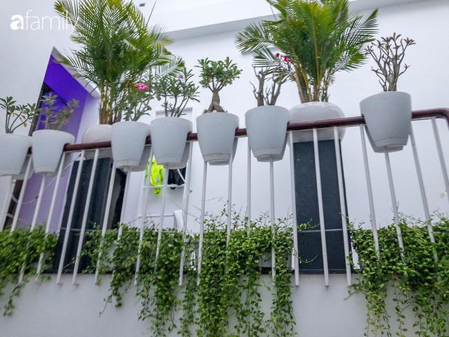 Giữa Sài Gòn náo nhiệt, vẫn có căn nhà ống 20m2 với 4 tầng lầu cực chill và không gian xanh mát chỉ với 20 triệu mua cây xanh - Ảnh 9.