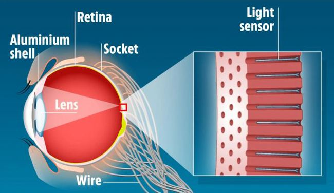 """Hồng Kông: Chế tạo """"siêu nhãn cầu"""" chứa gấp 46 lần tế bào mắt thường giúp con người nhìn xuyên bóng tối - Ảnh 1."""
