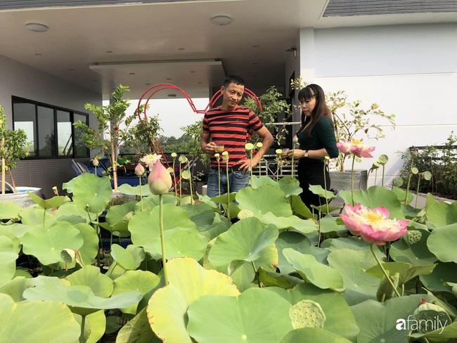 Doanh nhân Sài Gòn trồng cả vườn rau và hoa như trang trại rộng 300m² trên sân thượng cho vợ cùng 4 con được sống gần gũi với thiên nhiên - Ảnh 3.