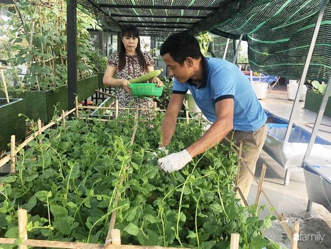 Doanh nhân Sài Gòn trồng cả vườn rau và hoa như trang trại rộng 300m² trên sân thượng cho vợ cùng 4 con được sống gần gũi với thiên nhiên - Ảnh 7.