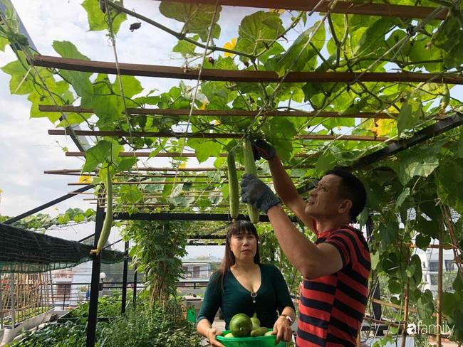 Doanh nhân Sài Gòn trồng cả vườn rau và hoa như trang trại rộng 300m² trên sân thượng cho vợ cùng 4 con được sống gần gũi với thiên nhiên - Ảnh 9.