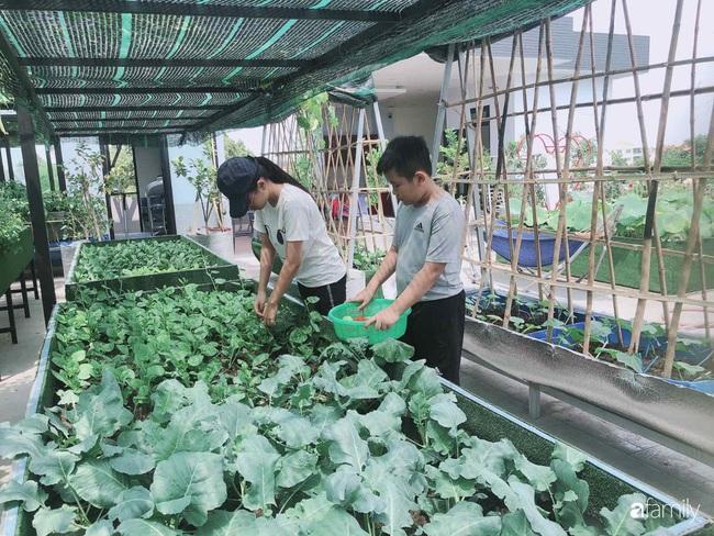 Doanh nhân Sài Gòn trồng cả vườn rau và hoa như trang trại rộng 300m² trên sân thượng cho vợ cùng 4 con được sống gần gũi với thiên nhiên - Ảnh 17.