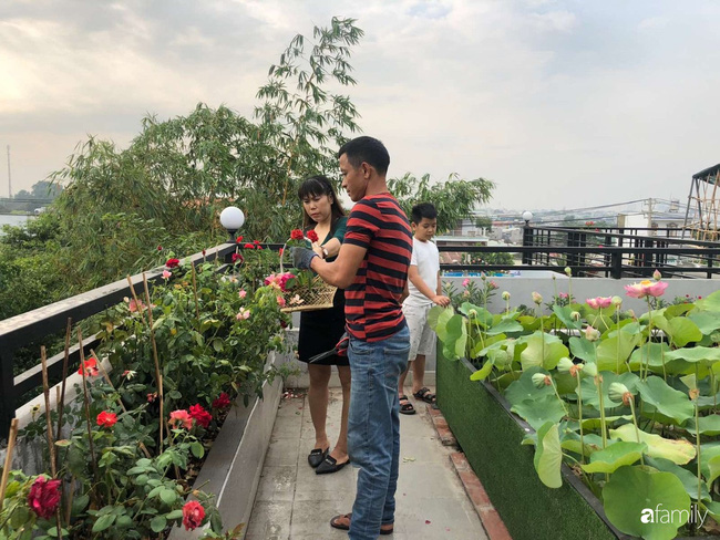 Doanh nhân Sài Gòn trồng cả vườn rau và hoa như trang trại rộng 300m² trên sân thượng cho vợ cùng 4 con được sống gần gũi với thiên nhiên - Ảnh 11.