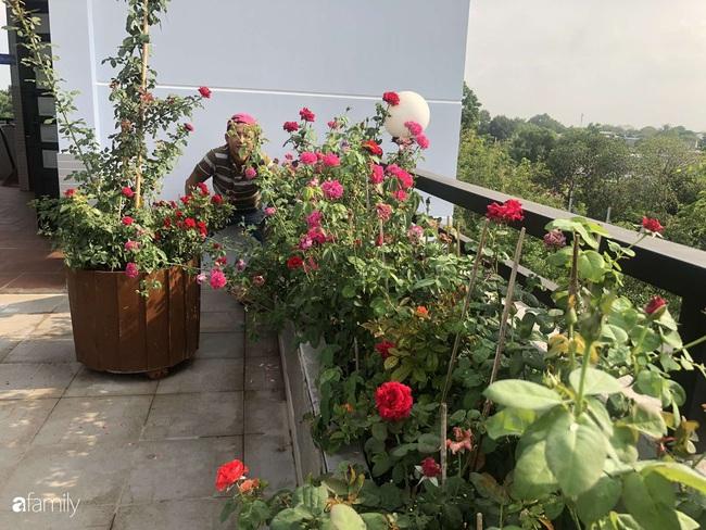 Doanh nhân Sài Gòn trồng cả vườn rau và hoa như trang trại rộng 300m² trên sân thượng cho vợ cùng 4 con được sống gần gũi với thiên nhiên - Ảnh 13.