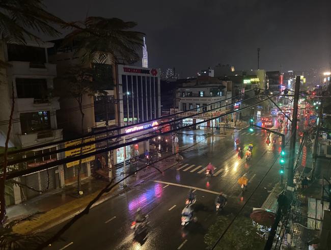 TP.HCM: Sau cơn mưa lớn kèm gió giật, nhiều cây xanh lại gãy đổ đè nhà dân, đè cả người đi đường - Ảnh 3.