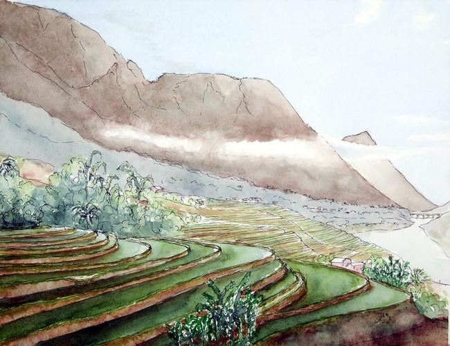 """Bộ tranh """"đẹp quá Việt Nam ơi"""" được vẽ bởi họa sĩ người Pháp  - Ảnh 1."""