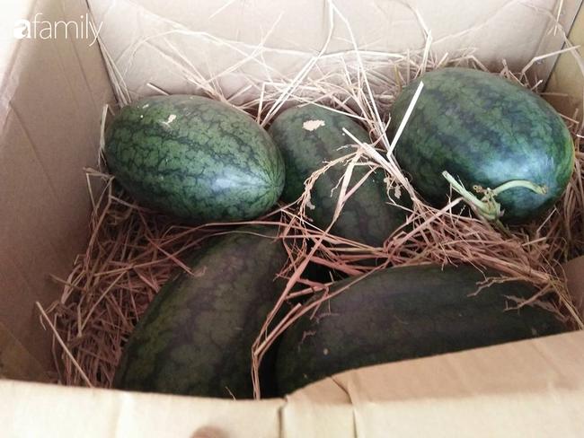 6 kinh nghiệm chọn mua dưa hấu không cần vỗ bồm bộp mà vẫn chọn được quả vỏ mỏng, ngọt lịm của bà nội trợ Hà Nội tuổi 40 - Ảnh 3.