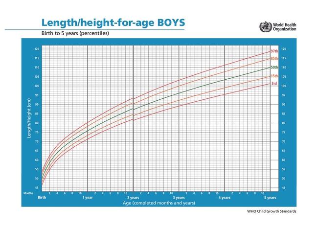 4 dấu hiệu báo động về chiều cao của trẻ, bố mẹ cần biết để điều chỉnh - ảnh 1